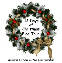12 Days of Christmas Blog Tour